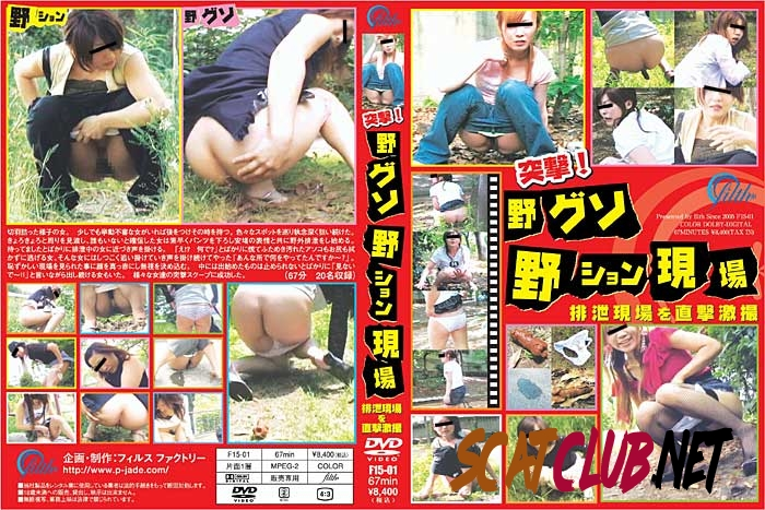 F15-01 突撃!野グソ野ション現場 排泄現場を直撃激撮 Outdoor Defecated [2018 | 780 MB] (14.0855_F15-01 | SD)