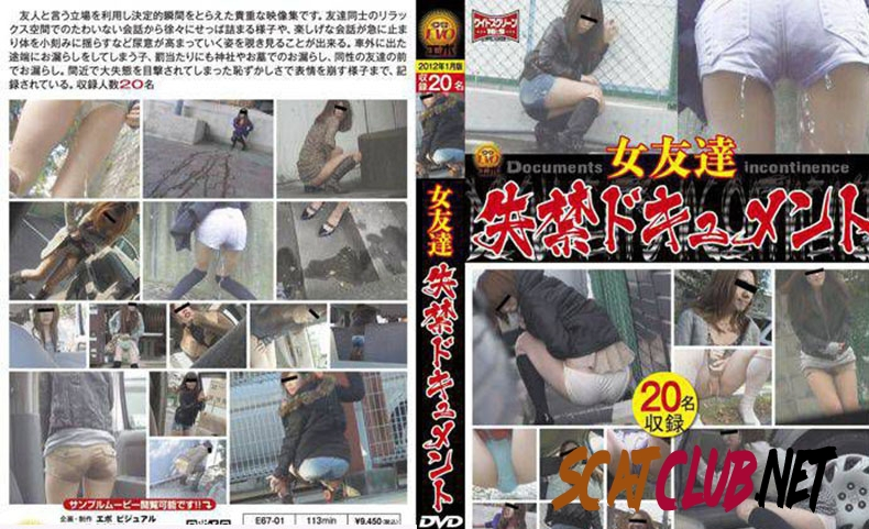 E67-01 女友達 失禁ドキュメント Friend Long Fed in the Toilet [2019 | 688 MB] (3.1583_E67-01 | SD)